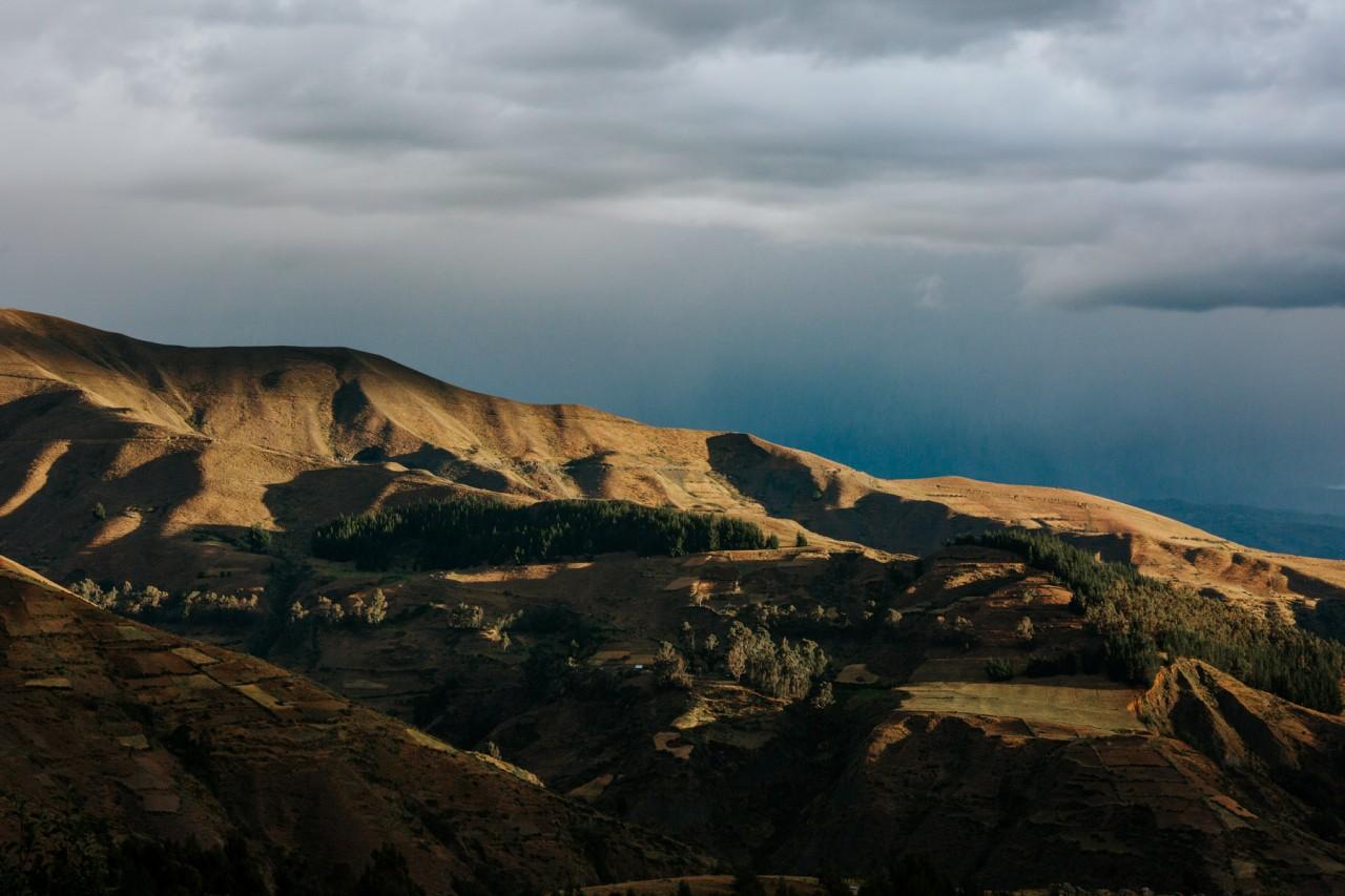 FREUDENREICH PERU